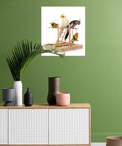 frameless wall art parrot on wall