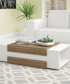 cute white and brown coffee table with side storage