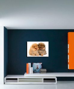 two dogs art wall display