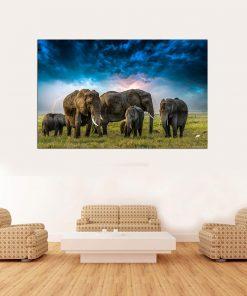 elephant group herb