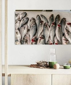 fish wall picture display