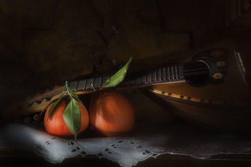 guitar on fruits black background