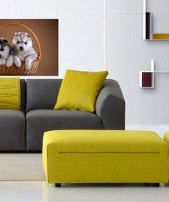 puppies art wall display