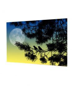 2 birds love night nature tree sun moon